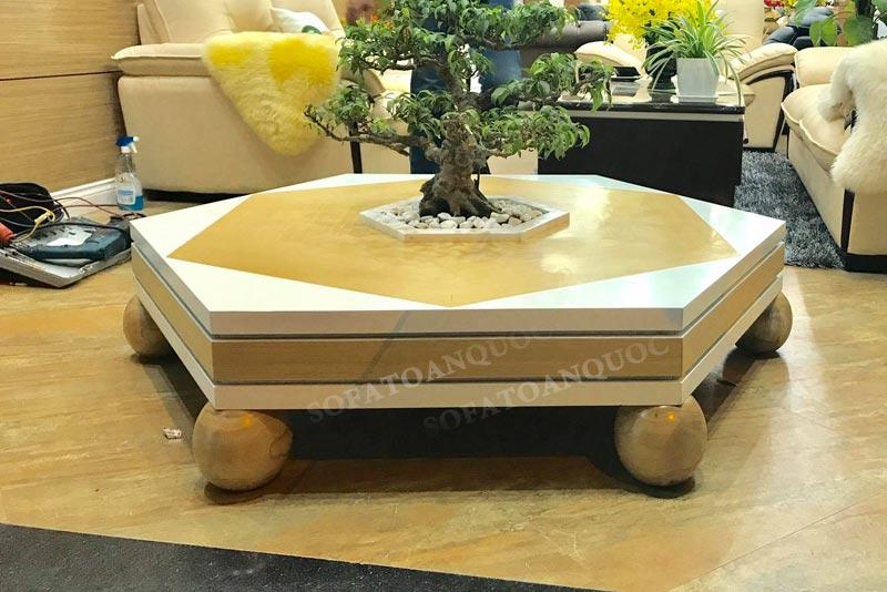 Cây sanh bonsai kiểu dáng vừa nhỏ nhắn vừa dễ thương mang vẻ đẹp về mặt thẩm mỹ