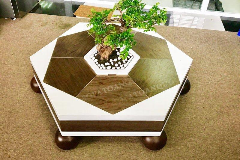 Mẫu bàn trà sofa đẹp mắt hình lục giác đẹp kết hợp với cây cảnh bonsai bắt mắt