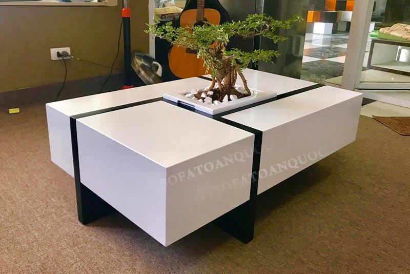 bàn trà cây cảnh cho văn phòng