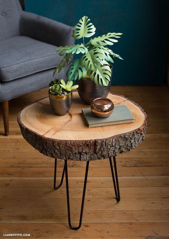 bàn gốc cây decor