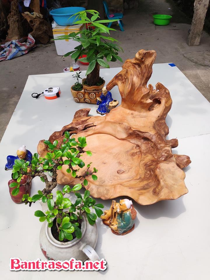 khay trà gỗ tinh tế bằng gốc cây
