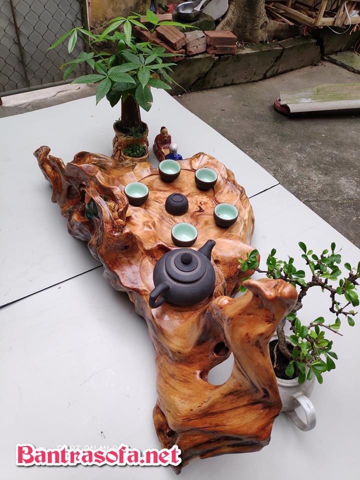 khay trà gỗ gốc cây đẹp