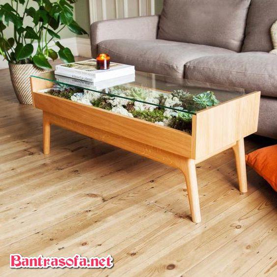 bàn trà sofa tiểu cảnh chân gỗ