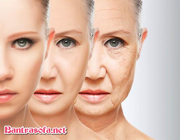 Uống trà xanh có tác dụng đáng kể với làn da con người. Giảm thời gian lão hóa đi và minh mẫn. Da dẻ căng hồng hào và ít nếp nhăn.