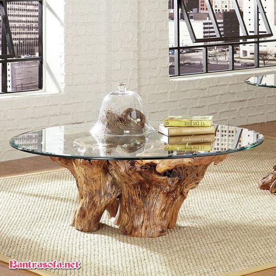 bàn trà độc đáo gốc cây mặt kính
